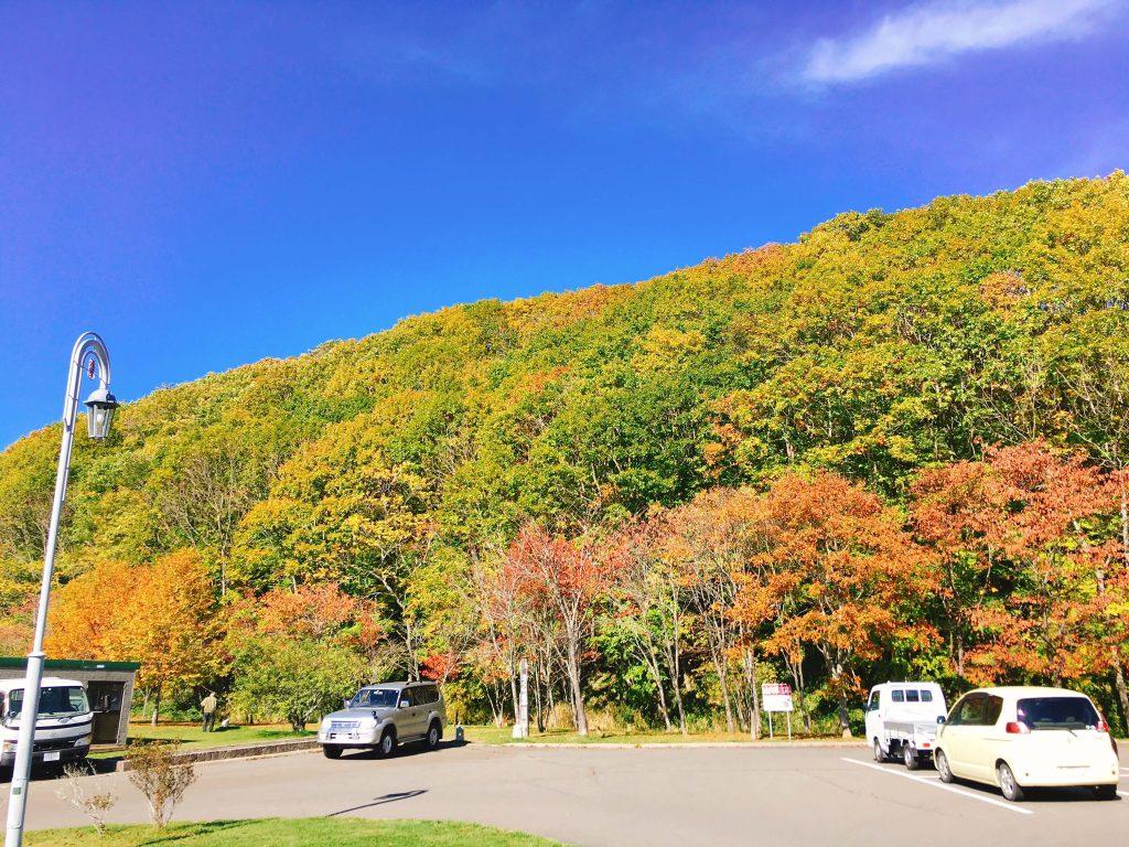 釧路町別保公園紅葉